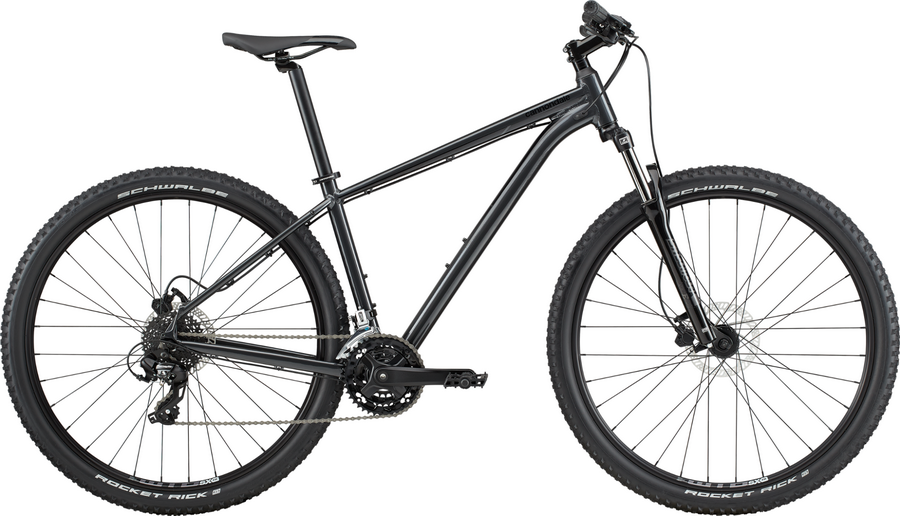 CANNONDALE TRAIL 29 8 (2020) (L) (ANTH)